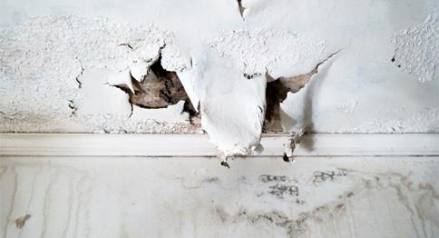 ترميم وصيانة بيوت الأسر المحتاجة